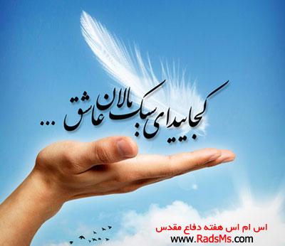 sms-shahidan