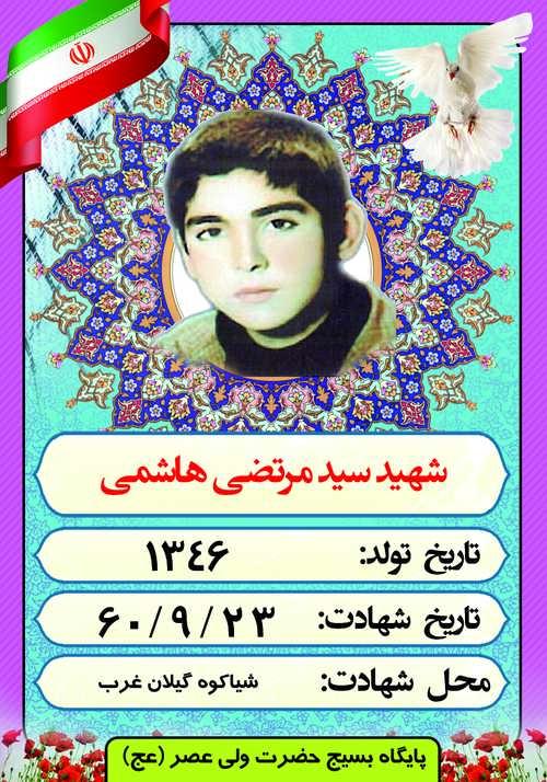 شهید سید مرتضی هاشمی
