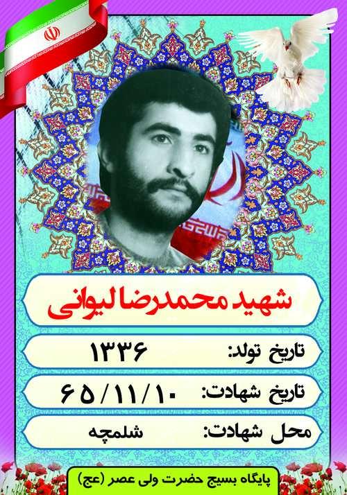 شهید محمد رضا لیوانی